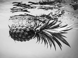 pineapple bnw (101 of 1).JPG