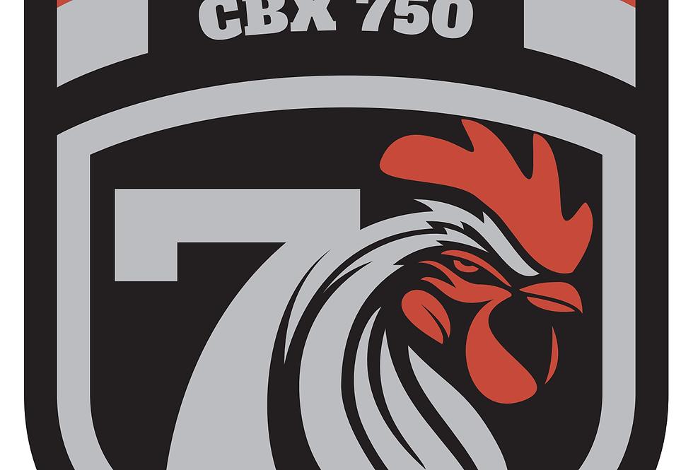 CDI usados em bom estado  cbx 750 + envio