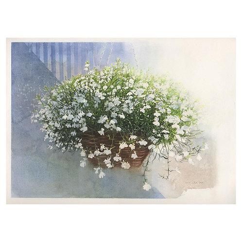 17-小さく白い花