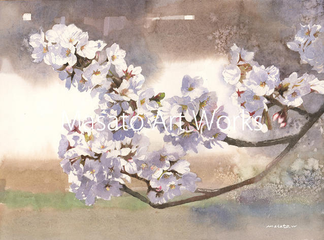 34-桜1.jpeg