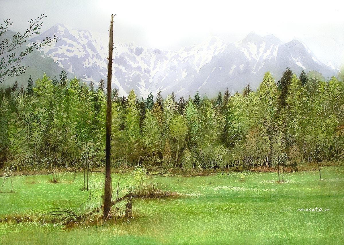 2020-上高地田代湿原