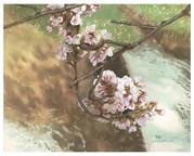349-桜.jpg