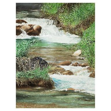 402.川の風景.jpg