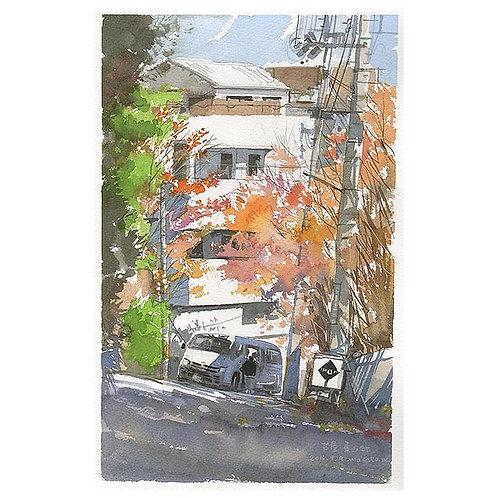 1011-秋の散歩道