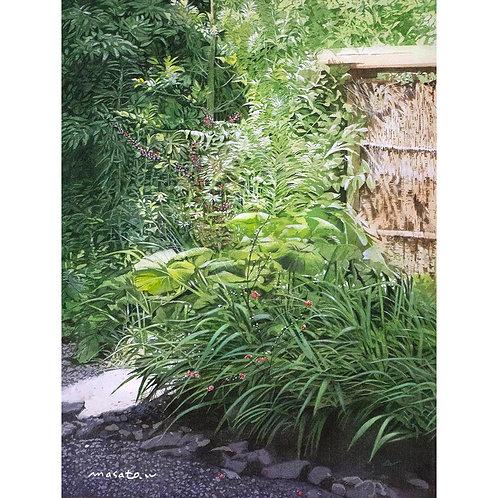 620-朝の庭