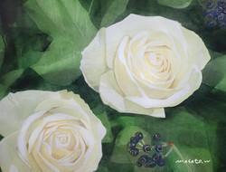 2020-薔薇