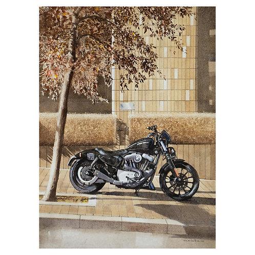 611-秋/ バイク