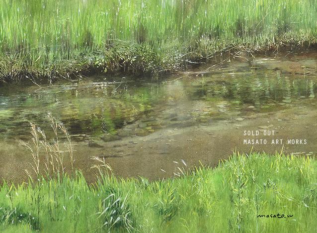 川草と映り0.jpg