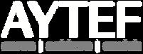 AYTEF Logo w Tag - WHT GRY - NO Backgrou