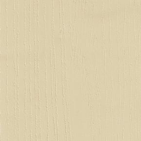 Painted Oak Mussel.jpg