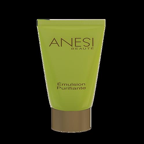 Anesi- Dermo Contrôle Emulsion Purifiante