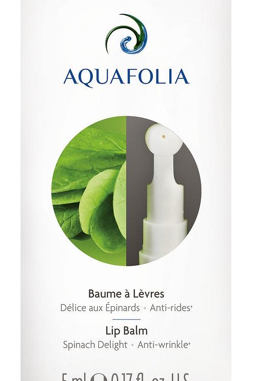 Aquafolia- Baume à Lèvres Délice aux Épinards- Produits pour tous