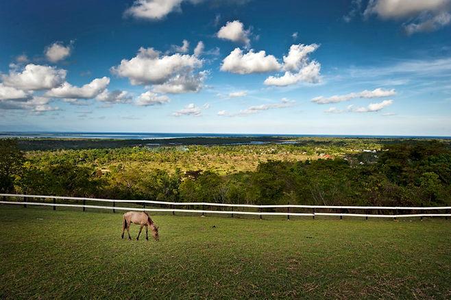Mitra's Ranch 2.jpg