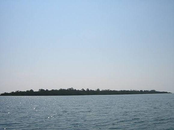 Bat island 2.jpg