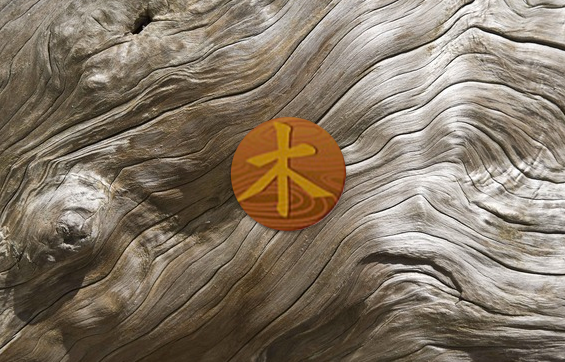 INTERCONNECTION WOOD