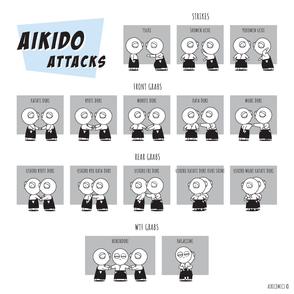 Aikido Intro #49: Attacks