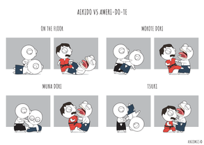 Aikido vs Ameri-Do-Te