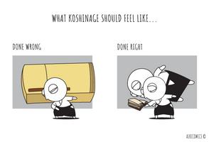 What Koshinage Should Feel Like...