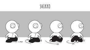 Aikido intro #35: Shikko