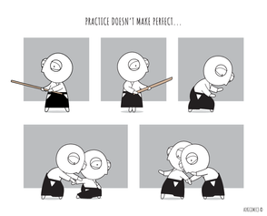 Practice Doesn't Make Perfect