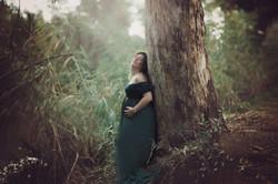 Pregnancy pictures,צילומי הריון, הריון,
