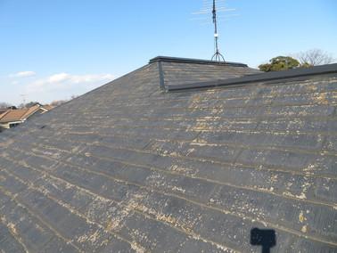 施工事例 外壁塗装+屋根カバー工事