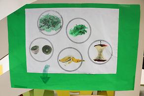 Eco-Projet-11.jpg