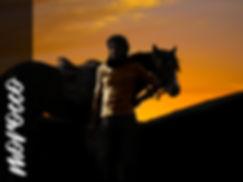 Cavalier Berbère, maitre écuyer, pur sang arabe, morocco, maroc, desert, atlas, équitation