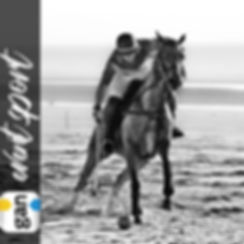 GAN france, sport event, polo, cup, tournoie