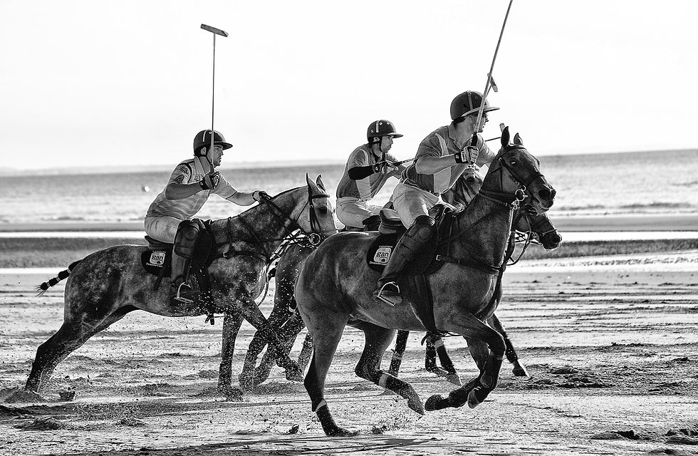 horses,beach,sand,polo,match,sea,report