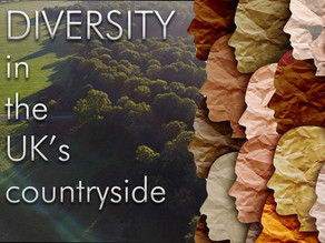 Diversity and our connection to the British countryside.