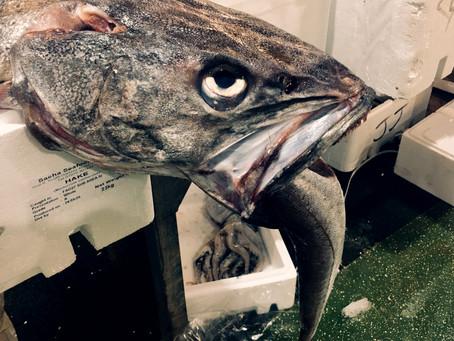 Inside the U.K's Biggest Fish Market