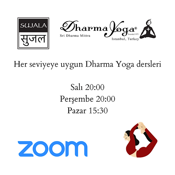 dharma yoga program.png