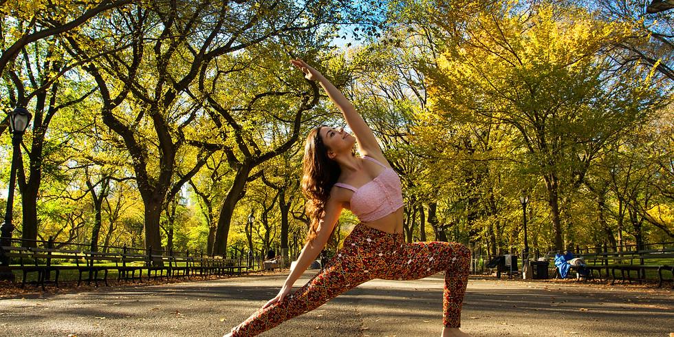 Dharma Yoga Başlangıç Programı (8 ders + 2)