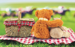 Rovers Tots Teddy Bears Picnic