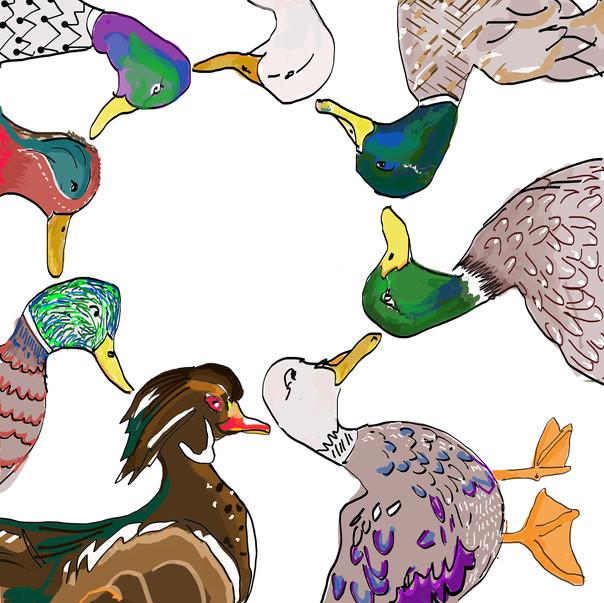 The Edgar Ducks