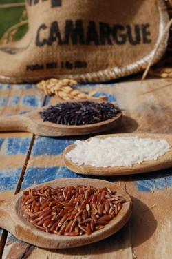Camargue rice