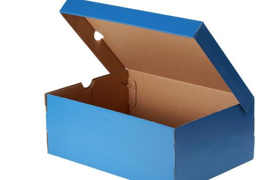 Blue sport shoe box.jpg