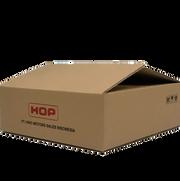 PACKAGING BOX HINO SPAREPART.png