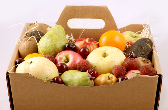 fruit box with handle.jpg