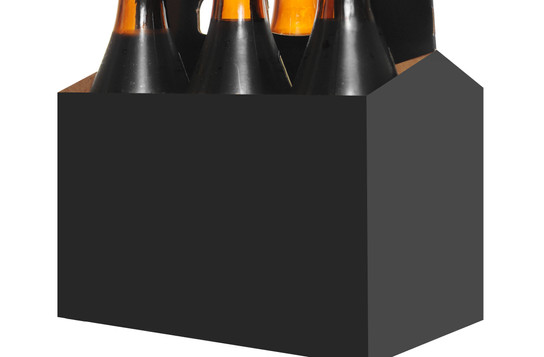6-pack beer carton with handle.jpg