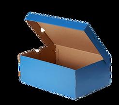 Blue%20sport%20shoe%20box_edited.png