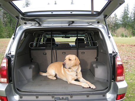 3048 Pet Partition Xtra Photos (17).jpg