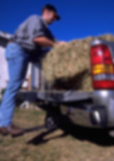 Truckstep