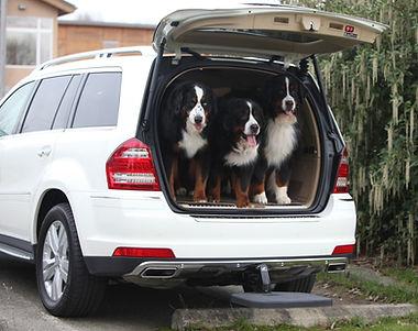 Heininger Twistep for SUV's