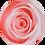 Thumbnail: Vase de 3 Roses Eternelles sur tige - Rose Tendre
