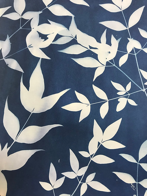 Cyanotype Printing on Handmade Paper; Nov 28-29 and Dec 6; times vary