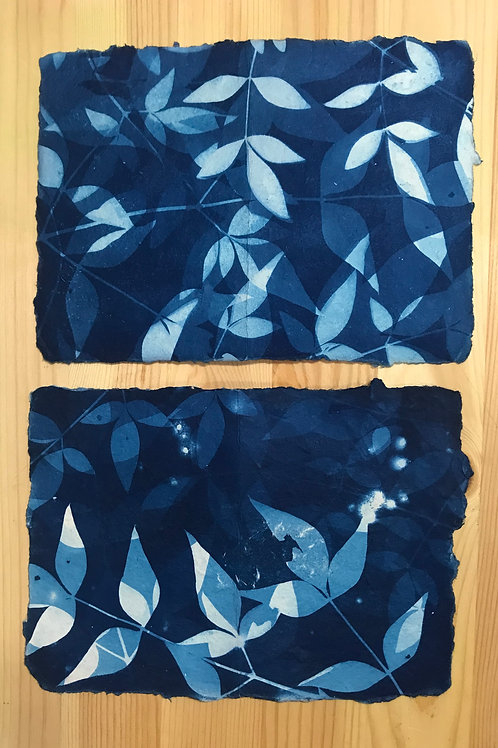 Cyanotype Printing; Feb 20-21, 10am-1pm