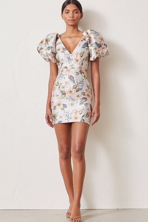 Fleurette V Dress
