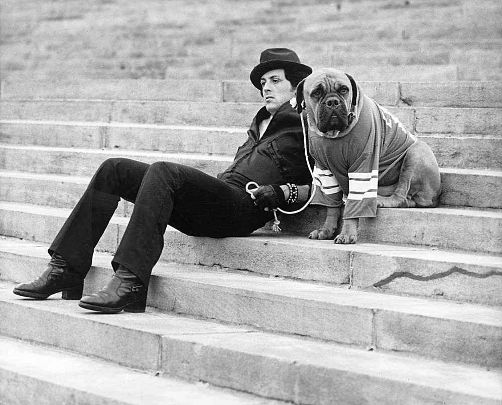 Contemplating change - Sylvester Stallone sits on the museum's steps with his beloved bull mastiff Butkus for the film 'Rocky,' 1976. (Photo: United Artists/Courtesy of Getty Images)